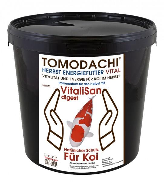 Gesundheitsfutter, Herbstfutter für Koi mit Monoglyceriden, semi-schwimmend, energiereich, Astax 3kg